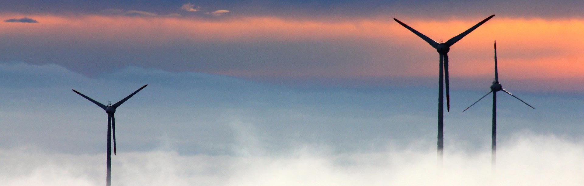 banner allg windraeder nebel