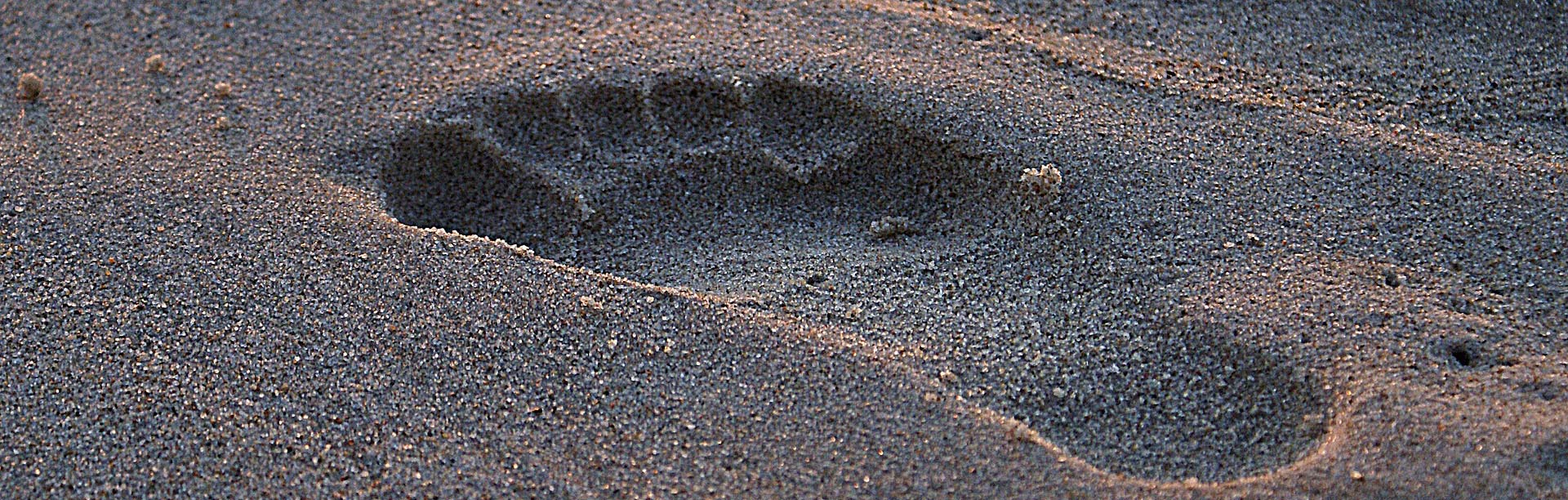 banner fussabdruck sand